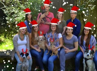 teamfoto-weihnachtlich