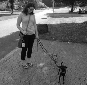 Erster-Spaziergang-Hund