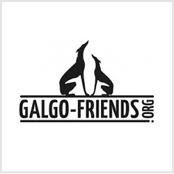 Galgo Friends
