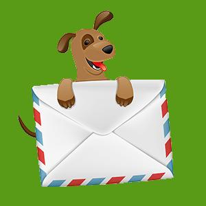 Tierschutz-Newsletter
