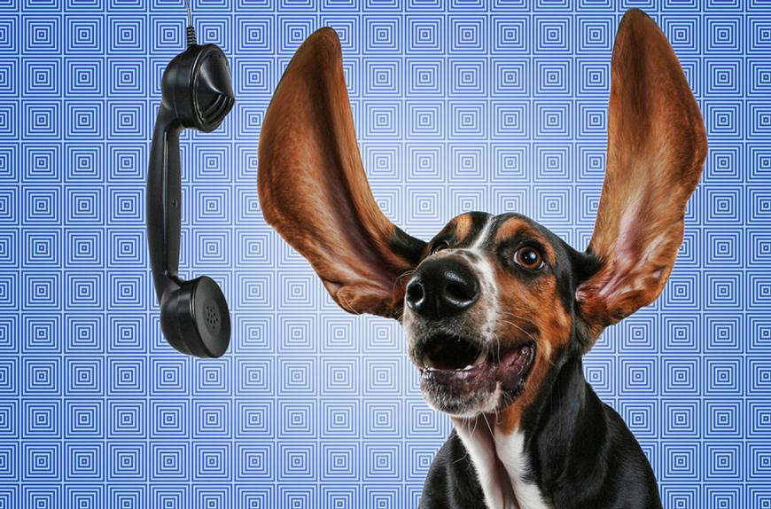 Wissenswerte-Adressen-und-Hotlines-groß