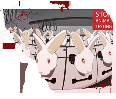 kaninchen-tierversuche
