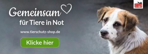 Tierschutz-Shop-Spendenplattform-Banner-Hund2