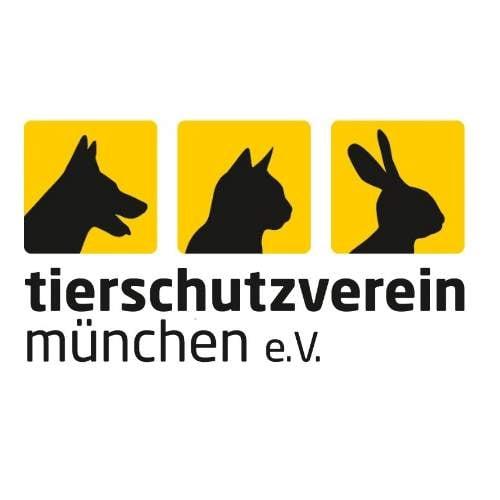 youtube-Logo-Tierschutzverein-München.jpg