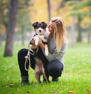 Pankreatitits beim Hund 2