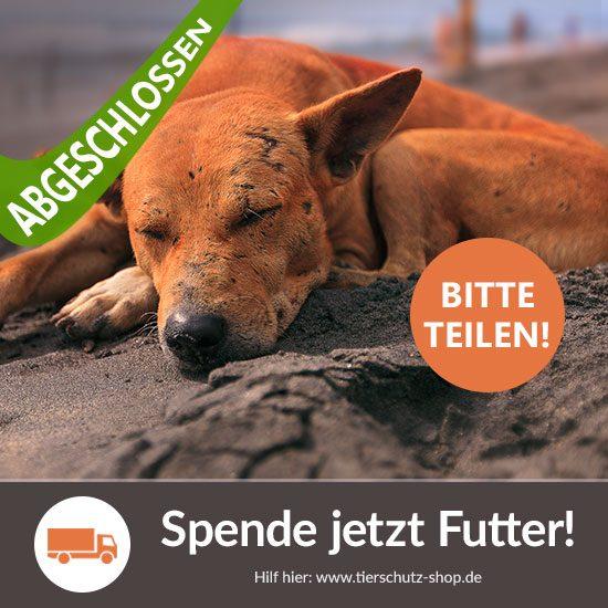 Tierschutz-Shop Spanien-Aktion Vorschaubild abgeschlossen
