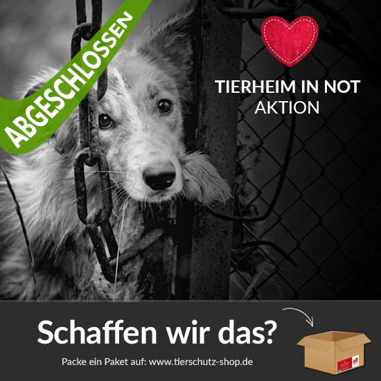 Tierheim in Not Aktion 2016 Tierschutz-Shop Post