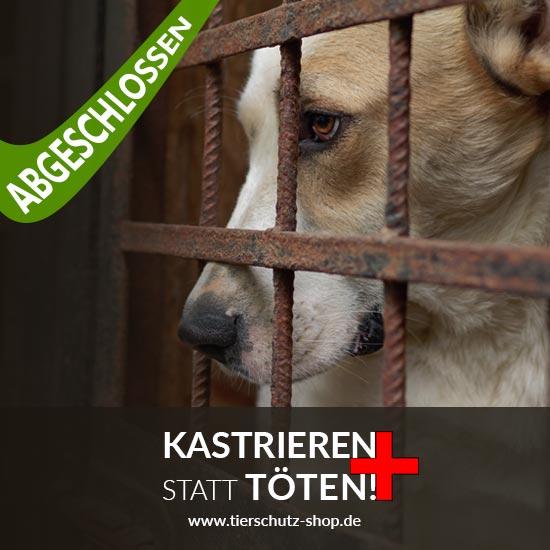 Tierschutz-Shop-Kastreiern-statt-toeten-Aktion-abgeschlossen