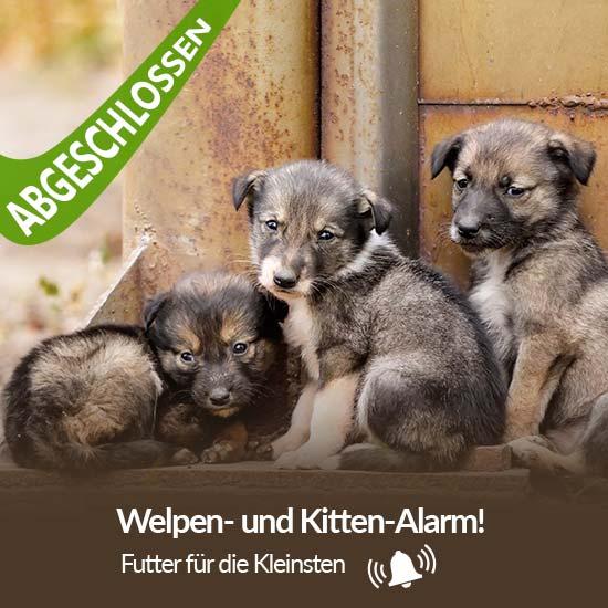 Tierschutz-Shop__Welpen_und_Kitten_Alarm_2019_Abgeschlossen