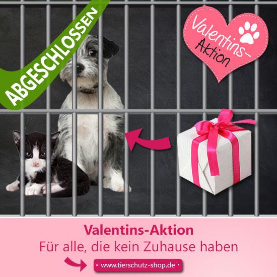 Spenden für Tiere