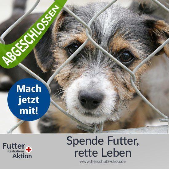 Futter- und Kastrationsaktion Tierschutz-Shop