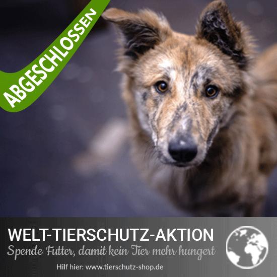 Welt-Tierschutz-Aktion 2017