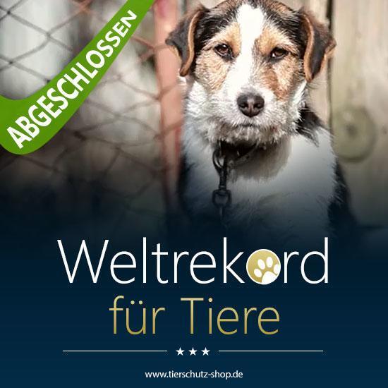 Weltrekord für Tiere Tierschutz-Shop