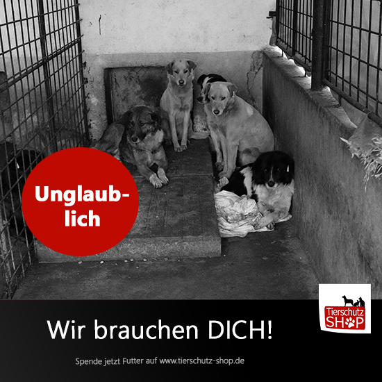 facebook-post-tierschutz-2