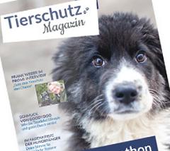 Tierschutz-Magazin-Tierschutz-Shop