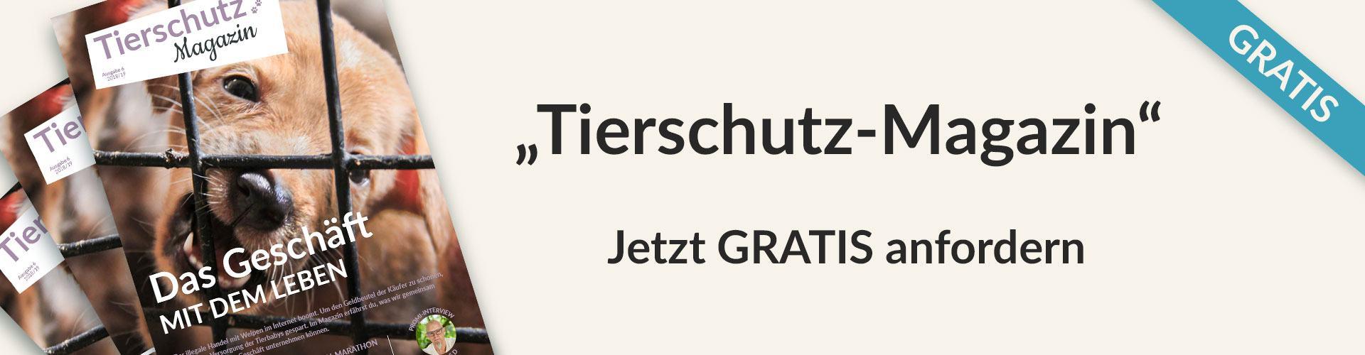 tierschutz-magazin-header_2