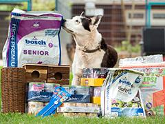 Karlsruhe-Tierheim Futterspenden Tierschutz-Shop
