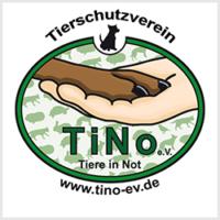Tino Mönchengladbach