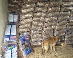 Weltrekord-für-Tiere-Tierschutz-Shop-Fellnasen-Nothilfe-Spenden