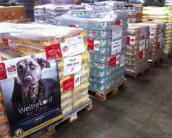 Weltrekord-für-Tiere-Tierschutz-Shop-Never-Walk-Alone-Spenden