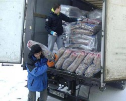 Weltrekord-für-Tiere-Tierschutz-Shop-White-Paw-Spenden