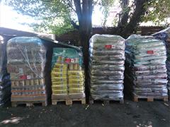 bärlin-für-tiere spenden tiere tierschutz