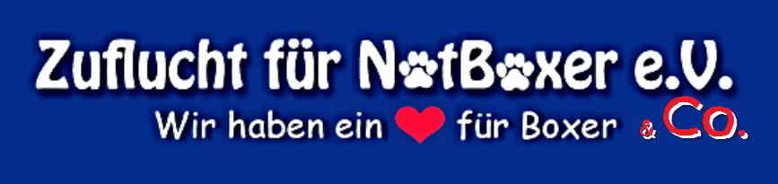 logo-Notboxer.png