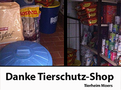 tierheim moers spenden tierschutz-shop hunde katzen