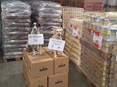 streunerhilfe-bulgarien-tierheim tierschutz hunde katzen spenden tierschutz-shop