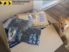 tierschutzverein-münchen tierheim spenden helfen tierschutz-shop
