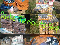 ungarische-hundehilfe spenden hunde ungarn helfen tierschutz-shop tierheim 2