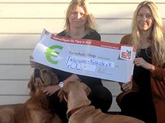 Fellnasen-Nothilfe-Rumänien-Tierschutz-Shop-Futter-Spenden