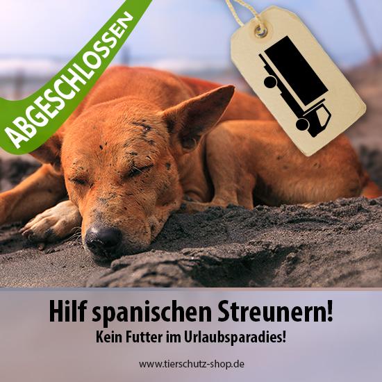 Spanien-Aktion Hilf spanischen Streunern Tierschutz-Shop Futter spenden helfen