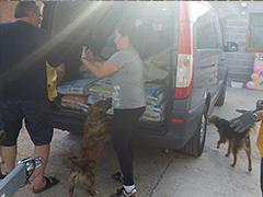 Pfotenhilfe mit Herz Spanien Spenden Tieschutz-Shop helfen