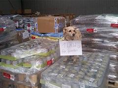 Spanien-Aktion Spenden Spanien Tieschutz-Shop helfen