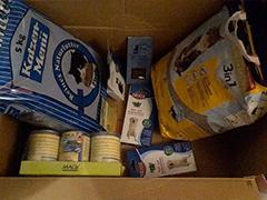 Tierhilfe Türkei Spenden Tieschutz-Shop helfen