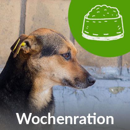 Wochenration-Hund_