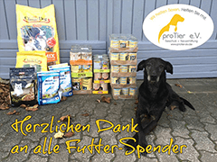ProTier-Tierschutz-Shop-Futter-spenden