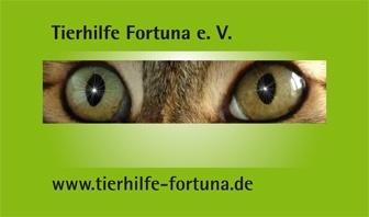 TierhilfeFortunaWebBanner1.jpg