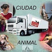 Galgo-Friends-Tierschutz-Shop_3-Futterspenden