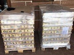 Katzenbabyrettung-Mittelhessen-Weltrekord-Tierschutz-Shop-Futterspenden