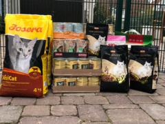 Spendenankunft Katzenschutzverein Karlsruhe