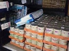 ProDogRomania-Weltrekord-Tierschutz-Shop-Futterspenden