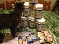 Tierhilfe-Izmir-Tierschutz-Shop-Futterspenden