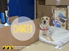 Tierschutzverein-München-Tierschutz-Shop-Futterspenden