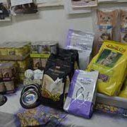 berliner_katzenschutz_1-Tierschutz-Shop-Futterspenden