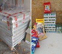 katzen_grenzenlos_1-Tierschutz-Shop-Futterspenden