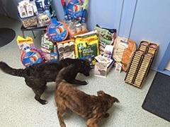 tierfreunde_muenster_1-Tierschutz-Shop-Futterspenden