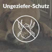 Ungezieferschutz für Hunde
