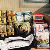 Sardinien_Hunde_1-Tierschutz-Shop-Futterspenden